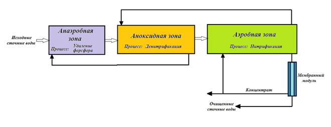 Блок-схема биореактора